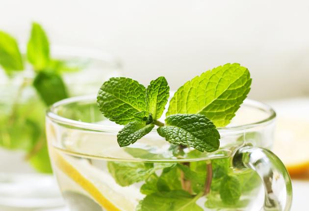 thee om langer en gezonder te leven (2)